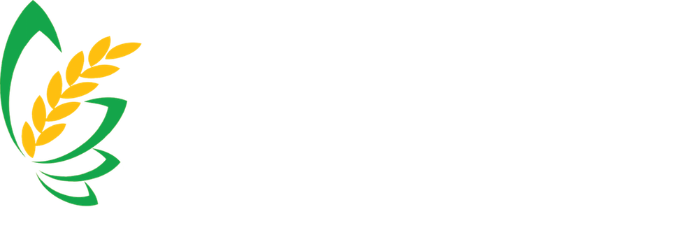 Unbenannt-1 Kopie Kopie